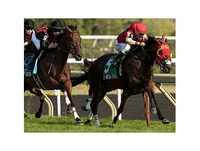 Up With the Birds won the Breeders' Stakes on the Woodbine turf last August.