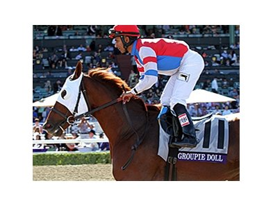 "Groupie Doll <br><a target=""blank"" href=""http://photos.bloodhorse.com/BreedersCup/2013-Breeders-Cup/Filly-and-Mare-Sprint/33149887_tpsLsn#!i=2880593436&k=FczqV9h"">Order This Photo</a>"
