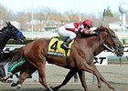 "Coup de Grace fights for victory in the Bay Shore Stakes.<br><a target=""blank"" href=""http://photos.bloodhorse.com/AtTheRaces-1/At-the-Races-2014/35724761_2vdnSX#!i=3162219038&k=w8MvHcW"">Order This Photo</a>"