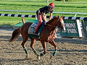 California Chrome at Belmont Park on June 6.