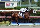 Fast Anna