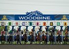 Woodbine to Offer 133 Racing Dates in 2016