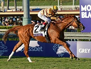 Wise Dan 'Ahead of Schedule' for 2013 Debut