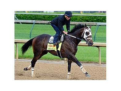 "General a Rod breezed at Churchill Downs the morning of April 29.<br><a target=""blank"" href=""http://photos.bloodhorse.com/TripleCrown/2014-Triple-Crown/Kentucky-Derby-Workouts/i-5KtKGDd"">Order This Photo</a>"