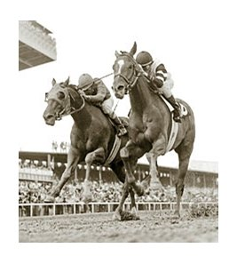 Affirmed takes the Preakness with Steve Cauthen aboard.
