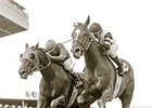 Affirmed winning the 1978 Preakness Stakes.