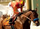 East-West Showdown Looms in Juvenile Fillies