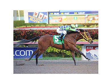 "Wildcat Red rolls to victory in the Hutcheson Stakes.<br><a target=""blank"" href=""http://photos.bloodhorse.com/AtTheRaces-1/At-the-Races-2014/35724761_2vdnSX#!i=3053785645&k=HjxFp57"">Order This Photo</a>"