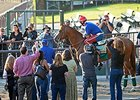 "California Chrome is popular with the fans.<br><a target=""blank"" href=""http://photos.bloodhorse.com/TripleCrown/2014-Triple-Crown/Belmont-Stakes-146/i-Dh9Lz4V"">Order This Photo</a>"