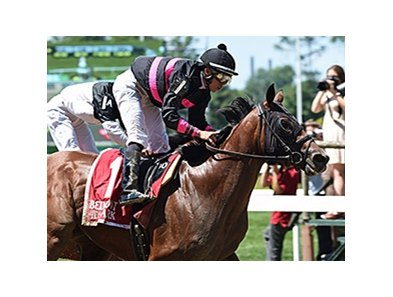Kid Cruz