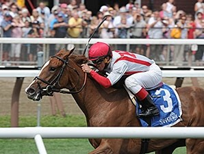 Partisan Politics won the P. G. Johnson Stakes on Aug 27.