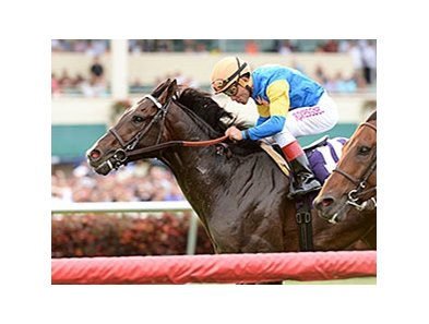 "Newsdad was a determined winner in the Pan American Stakes.<br><a target=""blank"" href=""http://photos.bloodhorse.com/AtTheRaces-1/At-the-Races-2014/35724761_2vdnSX#!i=3149374521&k=5P8kMJ6"">Order This Photo</a>"