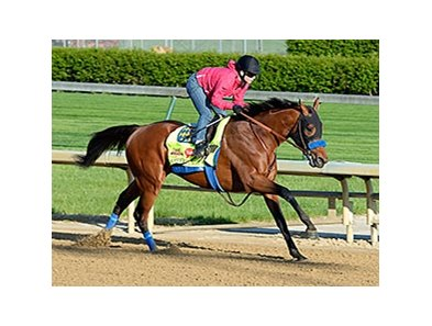 "Hoppertunity breezed five furlongs in 1:00 1/5 on April 23.<br><a target=""blank"" href=""http://photos.bloodhorse.com/TripleCrown/2014-Triple-Crown/Kentucky-Derby-Workouts/i-zqGVvTk"">Order This Photo</a>"