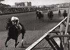 Ruffian