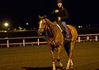 Wise Dan Works Toward Maker's 46 Mile Defense