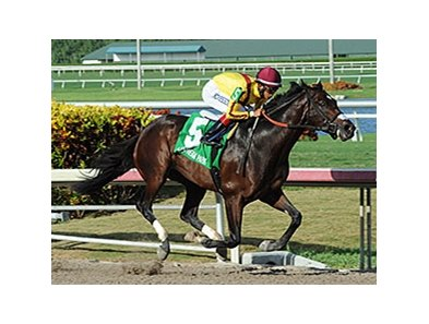 Atreides wins the Monarchos Stakes.