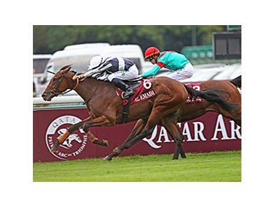 "Karakonti won the Qatar Prix Jean-Luc Lagardere in October 2013.<br><a target=""blank"" href=""http://photos.bloodhorse.com/AtTheRaces-1/at-the-races-2013/27257665_QgCqdh#!i=2814170178&k=W7T22bf"">Order This Photo</a>"