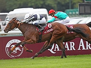 Karakonti won the Qatar Prix Jean-Luc Lagardere in October 2013.