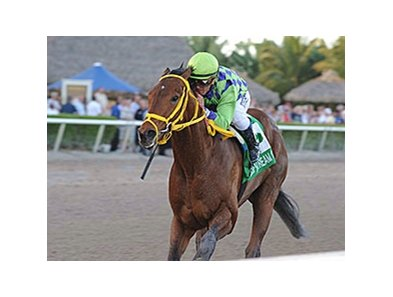 "Wildcat Red<br><a target=""blank"" href=""http://photos.bloodhorse.com/AtTheRaces-1/At-the-Races-2014/35724761_2vdnSX#!i=3053786708&k=b3qsTpW"">Order This Photo</a>"