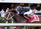 Stopshoppingdebbie won the 2014 Emerald Distaff on Aug 24 at Emerald Downs.