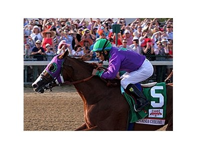 "2014 Kentucky Derby winner California Chrome is among the nominated horses to the Los Alamitos Derby.<br><a target=""blank"" href=""http://photos.bloodhorse.com/TripleCrown/2014-Triple-Crown/Kentucky-Derby-140/i-BkbZ9B4"">Order This Photo</a>"