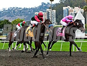 The El Camino Real Derby.
