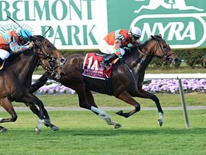 Top Turf Mare Laughing Dies From Colic