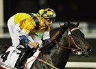 "Sterling City and Joao Moreira take the Dubai Golden Shaheen.<br><a target=""blank"" href=""http://photos.bloodhorse.com/AtTheRaces-1/Dubai-2014/38085033_tQgx4h#!i=3148677814&k=MD6RqFD"">Order This Photo</a>"