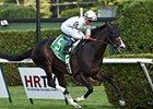 Tourist comes home strong to win the Sir Cat Stakes.