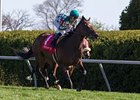 "Centre Court won the 2013 Jenny Wiley Stakes.<br><a target=""blank"" href=""http://photos.bloodhorse.com/AtTheRaces-1/at-the-races-2013/27257665_QgCqdh#!i=2455324228&k=69pQKfC"">Order This Photo</a>"
