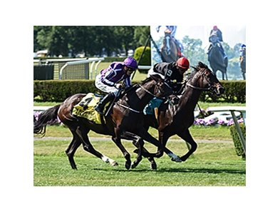 Adelaide (outside) running in the Belmont Derby Invitational.