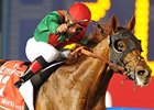 "Animal Kingdom won the 2013 Dubai World Cup.<br><a target=""blank"" href=""http://photos.bloodhorse.com/AtTheRaces-1/at-the-races-2013/27257665_QgCqdh#!i=2434319833&k=PNZgC3q"">Order This Photo</a>"