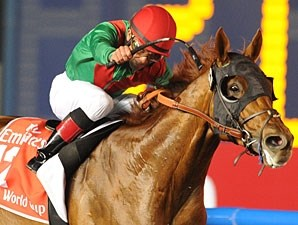 Animal Kingdom won the 2013 Dubai World Cup.