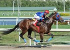 "Social Inclusion<br><a target=""blank"" href=""http://photos.bloodhorse.com/AtTheRaces-1/At-the-Races-2014/35724761_2vdnSX#!i=3119451706&k=NSgCwwZ"">Order This Photo</a>"