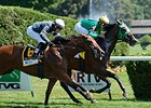 "King Kreesa won the 2014 West Point Stakes. <br><a target=""blank"" href=""http://photos.bloodhorse.com/AtTheRaces-1/At-the-Races-2014/i-wXW8wHK"">Order This Photo</a>"