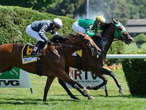 King Kreesa won the 2014 West Point Stakes.