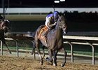 "Imperative goes by Game On Dude to win the Charles Town Classic.<br><a target=""blank"" href=""http://photos.bloodhorse.com/AtTheRaces-1/At-the-Races-2014/35724761_2vdnSX#!i=3190473451&k=7HFL9SB"">Order This Photo</a>"