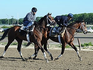 Matterhorn (inside) and Commissioner jogged at Belmont Park on June 1, 2014.
