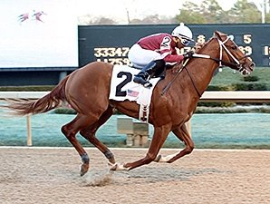Derby Contender Tapiture Breezes at Churchill