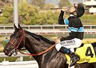 Shared Belief after his victory in the Awesome Again