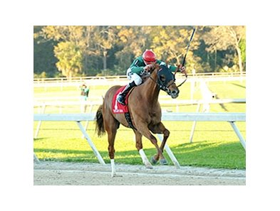Ring Weekend runs away from the competition in the Tampa Bay Derby.