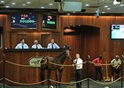 A bay filly from Indian Charlie's final crop topped the sale's third session on a final bid of $500,000 on June 19.