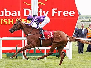Australia Easy Irish Derby Victor