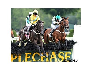 "Makari (right) wins the 2014 A. P. Smithwick Memorial Steeplechase Stakes. <br><a target=""blank"" href=""http://photos.bloodhorse.com/AtTheRaces-1/At-the-Races-2014/i-TfPRbqg"">Order This Photo</a>"