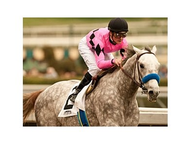 Flashback is the 9-5 favorite in the Santa Anita Derby.
