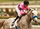 Tapit Hits Graded Stakes Trifecta