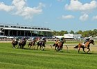 Tampa Bay Downs returns to action with 10 races Nov. 28