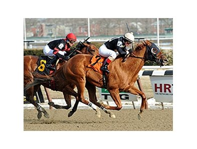"Candyman E gets by Dads Caps to win the Toboggan Stakes.<br><a target=""blank"" href=""http://photos.bloodhorse.com/AtTheRaces-1/At-the-Races-2014/35724761_2vdnSX#!i=3053524166&k=8S4ZpFk"">Order This Photo</a>"