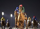 Prince Bishop and African Story finished first and second in Round 2 of the Al Maktoum Challenge.