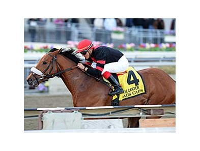 "Dads Caps leads them home in the Carter Handicap.<br><a target=""blank"" href=""http://photos.bloodhorse.com/AtTheRaces-1/At-the-Races-2014/35724761_2vdnSX#!i=3162218820&k=DxG6F28"">Order This Photo</a>"